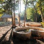 Our medicinal garden project