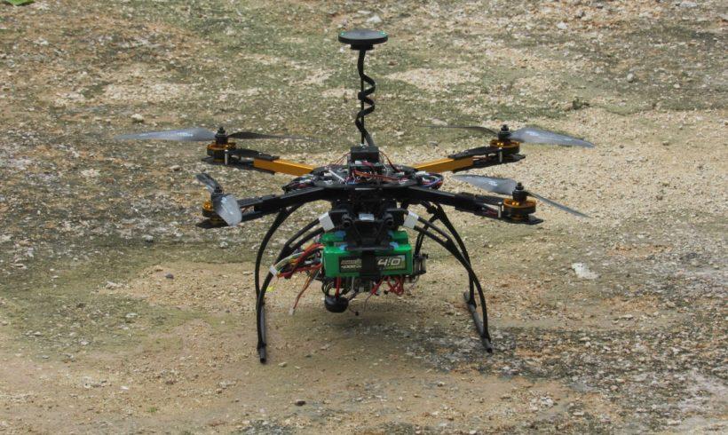 Drones, spider monkeys and Los Arboles Tulum
