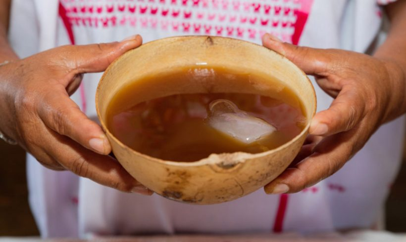 Mayan sacred drinks: Pozol & Tepache
